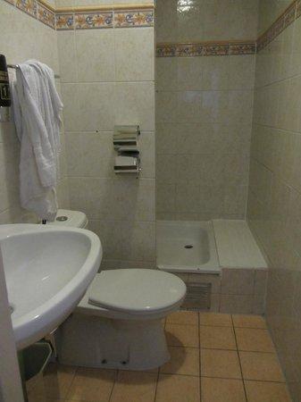 Hotel Manofa: Shower room - yuck!