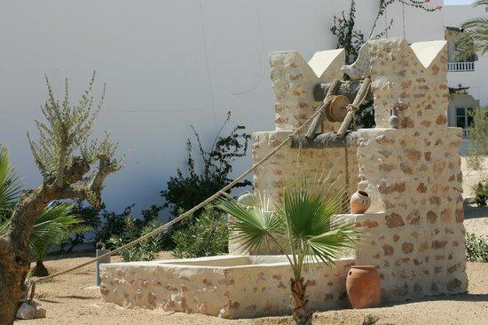 Djerba Sun Club: Jardin du Sun