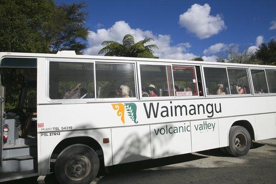 Waimangu Volcanic Valley: The Bus