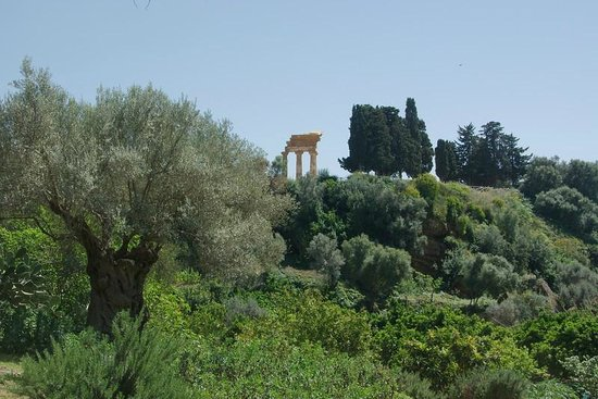 Il Giardino della Kolymbetra: Giardiono della Kolymbetra