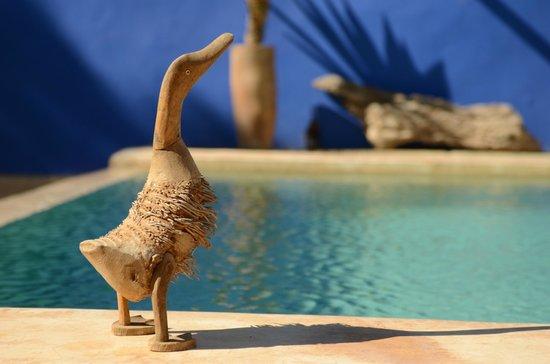 Riad Baoussala: La psicine / The pool