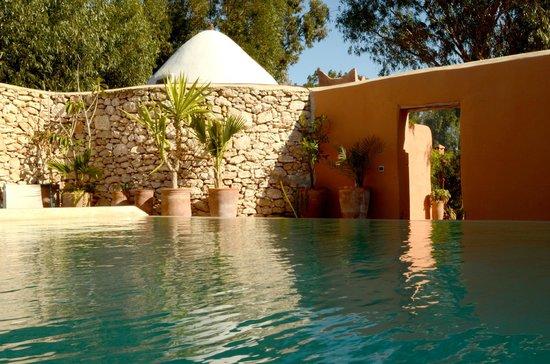 Riad Baoussala: La piscine chauffée à 28° / The heated pool