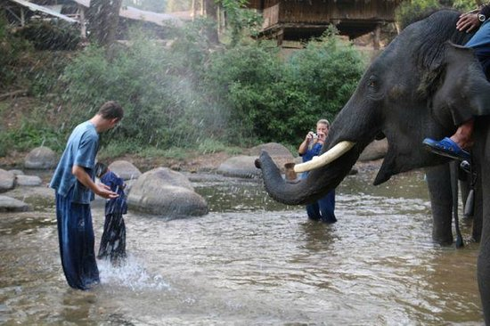 Thai Elephant Home: Splashing in the water with the elephants is awesome!