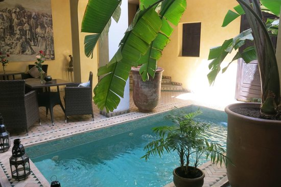 Riad Aguaviva: Small but refreshing pool