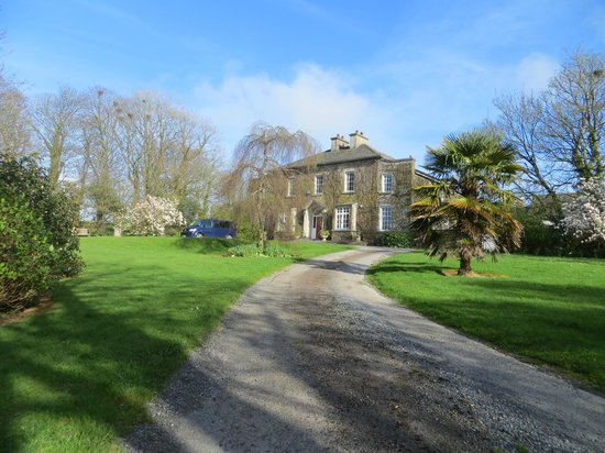 Foxmount Country House: View up the drive