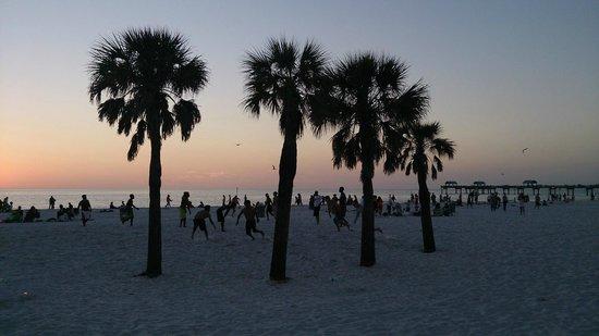 Hyatt Regency Clearwater Beach Resort & Spa: Dusk Palms