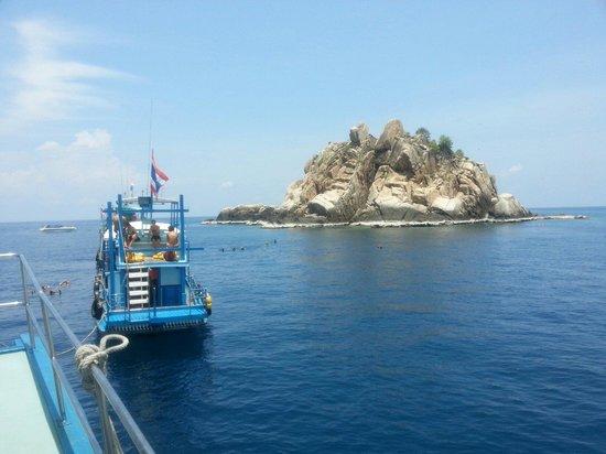 Haad Yao Divers : Shark Island near Koh Tao