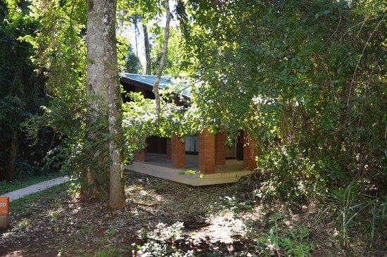 Yvy Hotel de Selva: Habitaciones ubicadas en cabanas, al medio de la selva