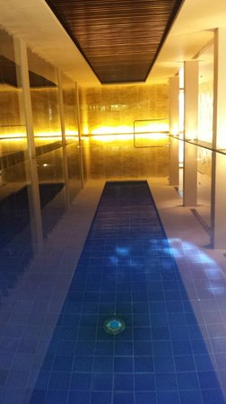 The Oberoi: Indoor pool had velvety smooth water!
