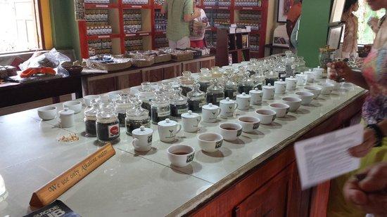 Handunugoda Tea Estate: types of tea we can taste