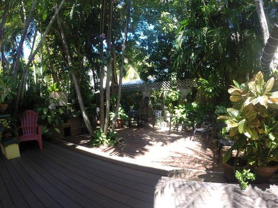 Douglas House: Gardens