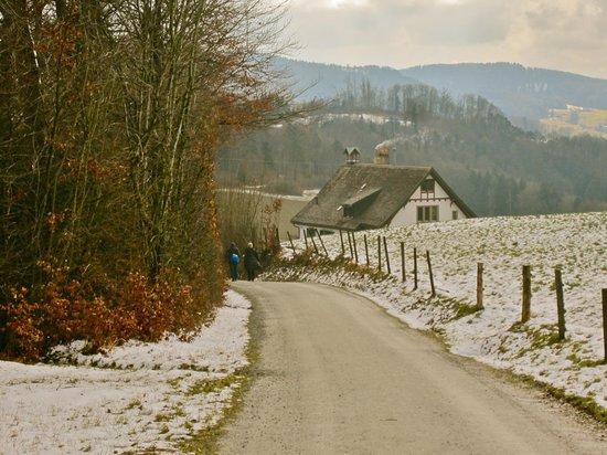 Uetliberg Mountain : along the trail towards Adliswill