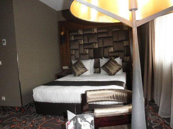 Hotel Golden Tulip Amsterdam West: My room