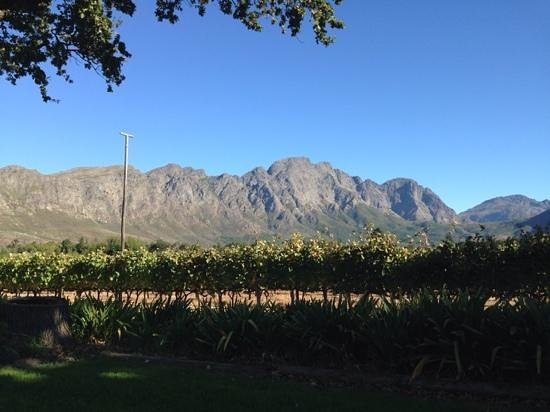 Bo La Motte Farm Cottages : Incredible views