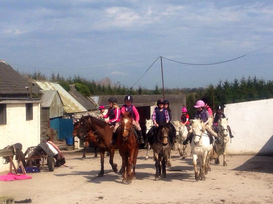 Flowerhill Equestrian Centre : Kinder mit Ponys