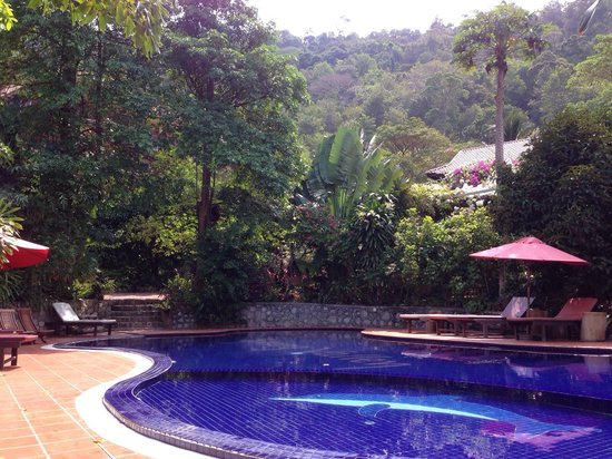 Spring Valley Resort : La piscine.