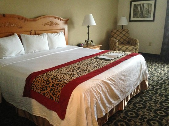 Quality Inn & Suites University : Standard King