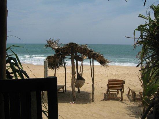 Cinnabar Resort : Aussicht vom Restaurant