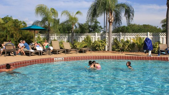 Best Western Plus Siesta Key Gateway: Pool area 1