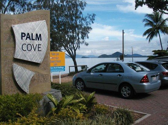 Palm Cove Beach3