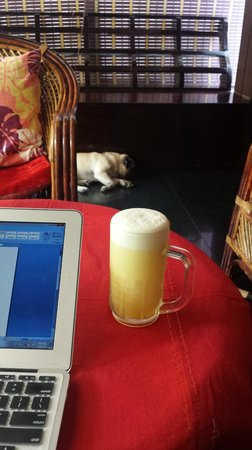Bella Homestay : Perfect companions - Biju's awesome fruit juice & Jack!