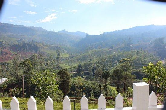 Amaya Langdale: Mountain view