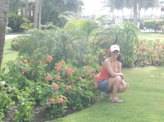 Now Larimar Punta Cana : Jardins