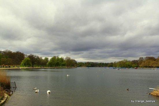 Hyde Park: Гайд-парк by Orange_bestiya