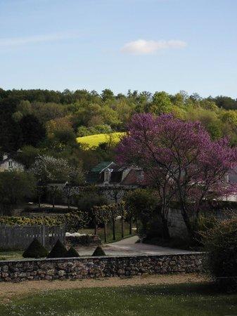 Abbaye Royale de Fontevraud : la campagne alentour