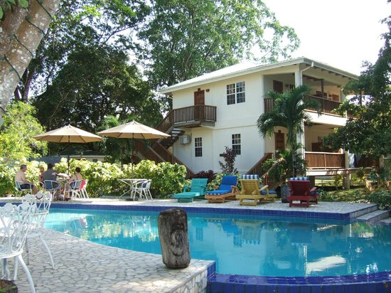 Black Orchid Resort : Swimming Pool Area