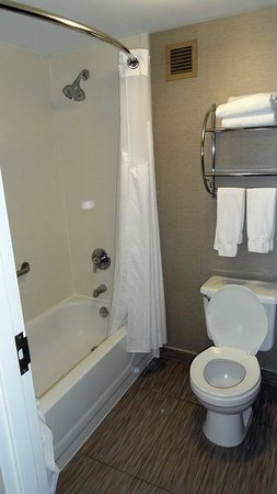 Holiday Inn Express Harrisburg: The toilet/shower room