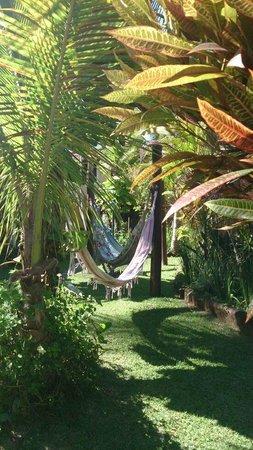 Privillage Praia: Detalhe do jardim