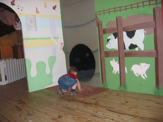 Purina Farms : The kids love the many tunnels outside the baby animal area.