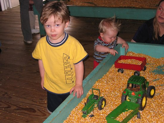 Purina Farms: Raking up the corn is a treat for the little ones.