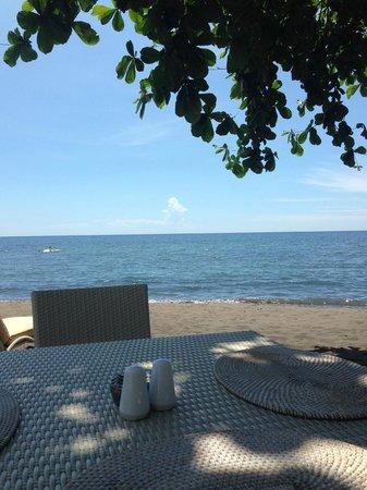 The Lovina: Lunch at the beach bar