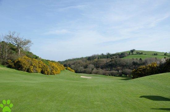 Druids Glen Golf Resort : Druids Heath