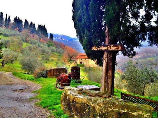 Tuscan Trails: Castello del Trebbio