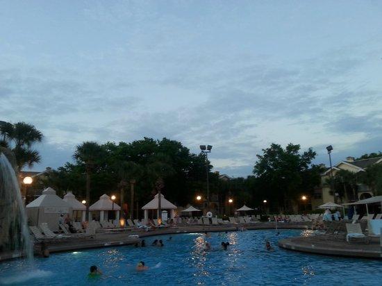 Sheraton Vistana Resort - Lake Buena Vista: Una de las piletas