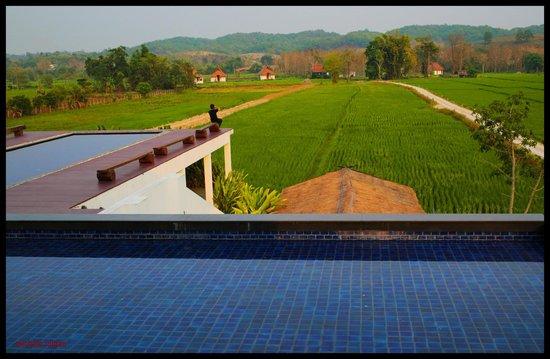 Manee Dheva Resort & Spa: Vue sur les rizières et la villas au fond, depuis l'espace restaurant-piscine