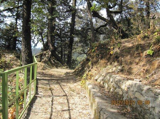 Yamunotri Temple : way to Yoamunotri