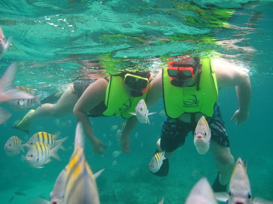 Sandals Negril Beach Resort Spa Snorkeling