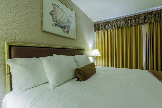 Howard Johnson Downtown Kamloops: King Bed