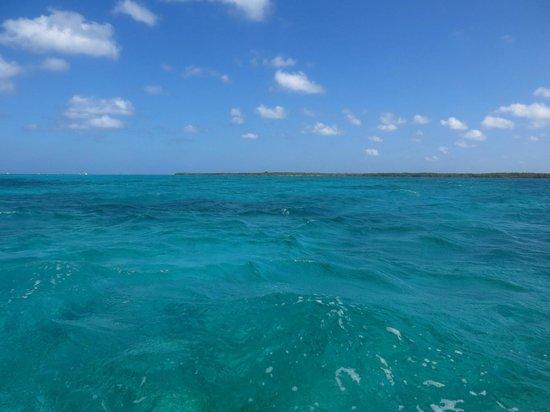 Snorkeling In Cozumel April 2014