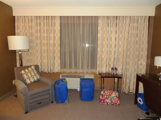 Sheraton Reston Hotel: View of our room.