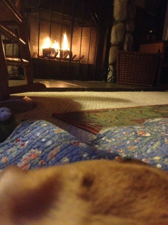 Quiet Creek Inn : Our puppy resting by the fire!