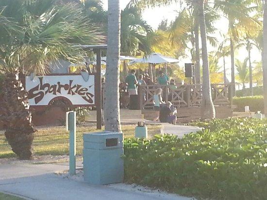 Club Med Turkoise, Turks & Caicos : Le Sharkie's