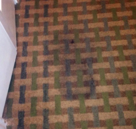 La Quinta Inn & Suites San Antonio The Dominion : Nasty stain on floor, as you walk in... Felt like we were in a Motel6, and should lay towels on