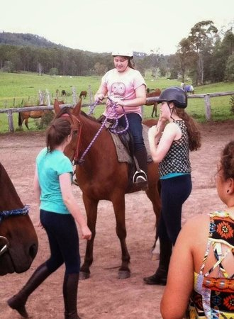 Gumnuts Farm and Horseriding Resort: From this (on Cylde)
