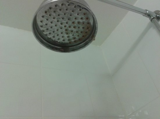 BEST WESTERN Webbington Hotel and Spa: limescale and soap scum on shower head