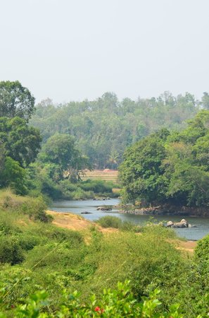 Ayurveda Yoga Villa : River view
